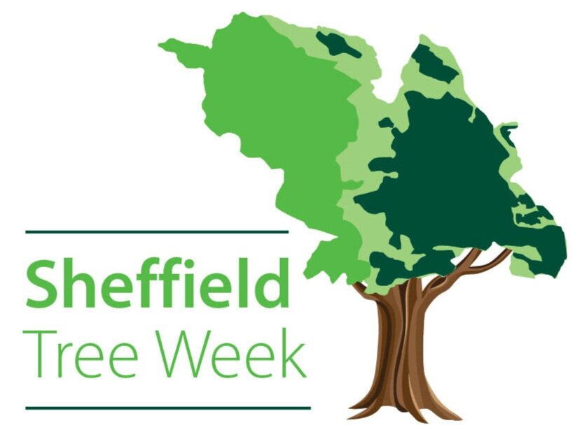 Woodland Wanders with Sheffield Woodland Connections for Sheffield Tree Week