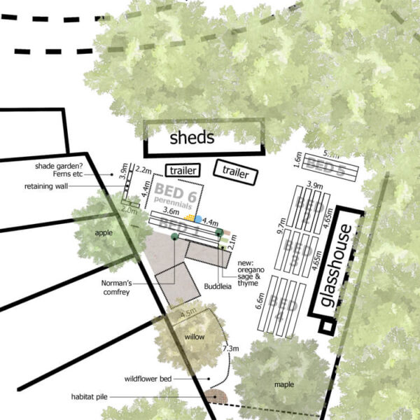 Learn to survey and design your garden